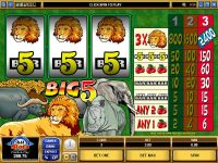 Big Five Microgaming Slot