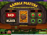 Tiger's Eye Microgaming Slot