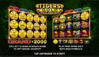 Tiger's Gold: Hold and Win Booongo Slot