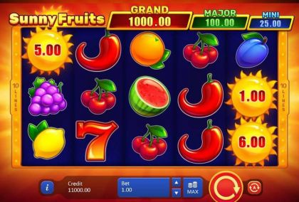 Sunny Fruits Hold and win Playson
